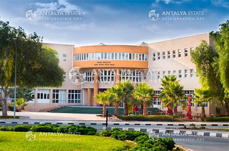 Условия обучения в Средиземноморском университете – Поступление